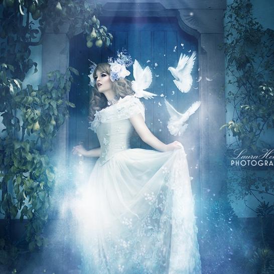 Cinderella by Jumeria Nox